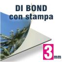 Pannello forex stampato